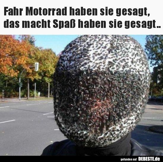 Motorrad Helm voller Fliegen